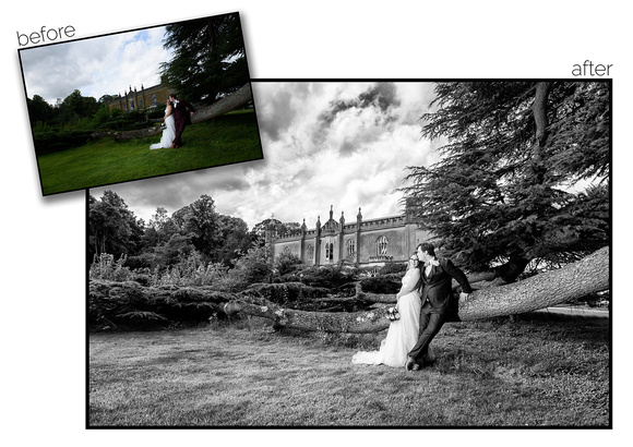 Bride and groom leaning on a tree, before and after. After is in Black and White